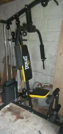 Everlast ev700 Multigym