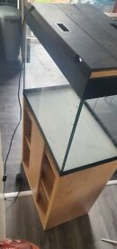 Fluval105ltr fish tank with cabinet