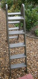 Painted ladder / steps