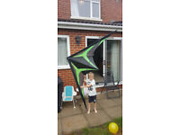 Air-one Liberty Standard custom coloured made precision kite