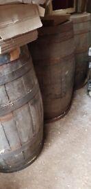 Beer Barrels (oak)