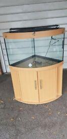 Juwel trigon 190 litre fish tank and stand corner unit setup 18