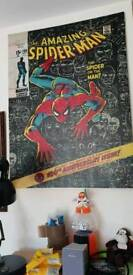 Miscellaneous Marvel and DC items