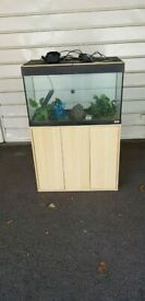 Fluval roma 125 litre fish tank and stand setup 55