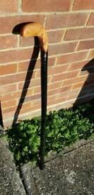 Large walking stick