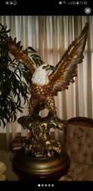 American Egle