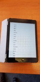 Ipad Mini (1) with 3G - 16Gb