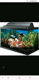 FISH TANK NEEDED!!PLEASE GET IN TOUCH!! FREE OR CHEAP!!