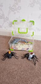 Wild Pets Spider Habitat (RRP £20) plus an extra Wild Pet (RRP £13)
