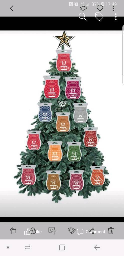 Scentsy Christmas Gifts.Scentsy Christmas Scents Gifts In Larne County Antrim Gumtree