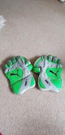 PUMA Ballistic 3000 Wicket Keeping Gloves
