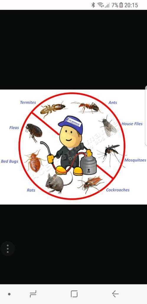 Dean's Pest Control