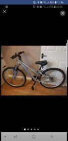 Apollo xc.26 bike