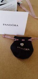 Official Pandora Charm