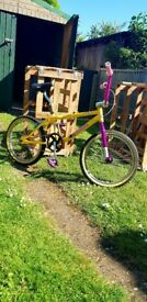 Gt pro performer bmx for sale