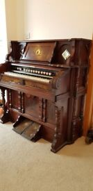 Pedal Organ in good working order. Beautiful piece of furniture and fun to play. Needs gone asap.