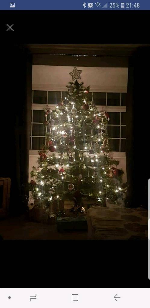 7ft christmas tree with lights 7ft xmas tree with lights in barnsley south yorkshire gumtree