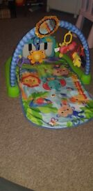 Fisherprice Baby play mat