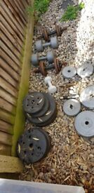 Weights ect for sale..selling cheap