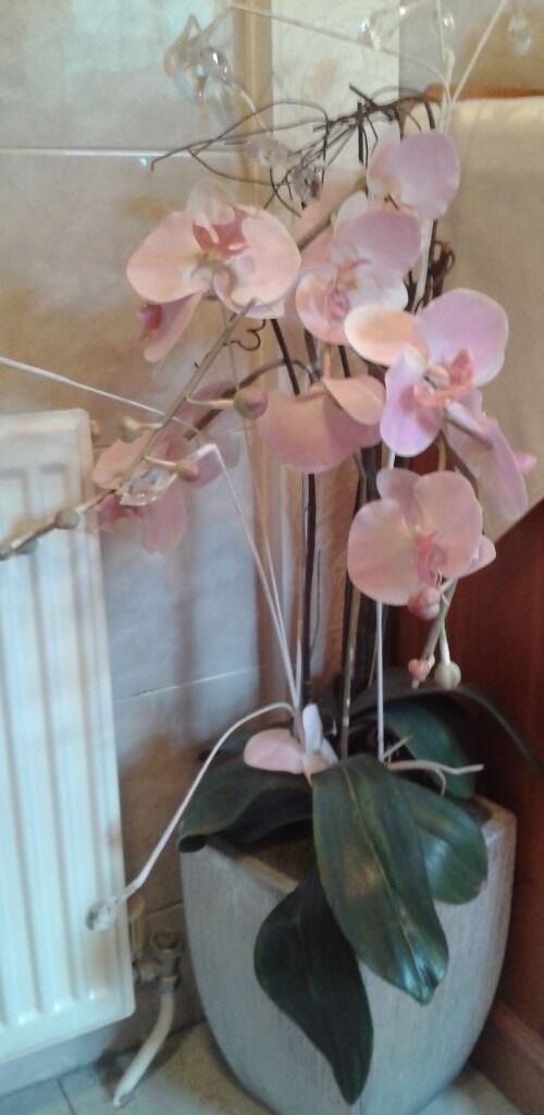 Artificial Pink Orchid and Pot