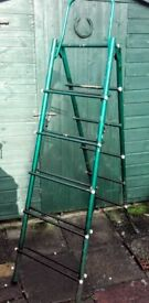 Vintage extending metal ladder