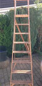 8 Rung Wooden Step Ladder