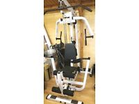 Body-solid multi gym