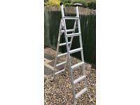 3-Way Combination Ladder Extends to 3 metres