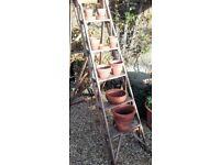 Vintage Terracotta Pot Collection