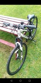 Adults Mountain Bike. Hardly used. Superb condition