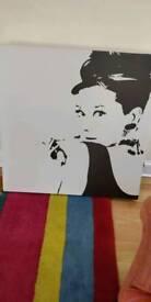 Audrey Hepburn cavas picture