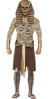 Herren Zombie Pharao Ägyptisch Mumie Halloween Kostüm Kleid Outfit M-L ()