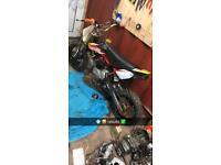 Pitbike 140cc z40 race cam