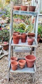 12 vintage terracotta plant pots