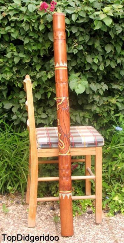 "47""120cm Aboriginal DIDGERIDOO Hand-Carved Lizard Dot-Painted Art +Bag +BeesWax"