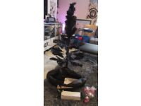 4 ft black Christmas tree in a bag.