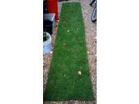 6 sq/mtr of premium grade turf