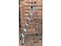 Combination ladders made by Beldray
