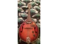 Samick Artist Series Edition Mandolin