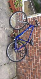 Apollo Moutain Bike