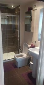 Lodger sought for room in professional household - (Ensuite £429 Double £360) - Studley B80