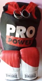 2ft unfilled punch bag and gloves