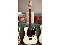 Fender Jim Root Telecaster MIM (NO TRADES)