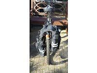 Men's Westcoast BSA Bike
