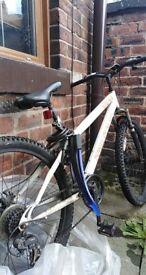Bronx Bicycle