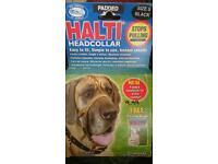 Haiti head colour size 5.