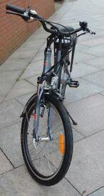 Woosh (Santana) Petite Electric Bike
