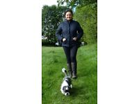 Dog Boarding Service in Leeds -Hansons Hounds Professional Dog Boarding and Walking