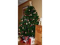 1.95m Christmas tree for sale