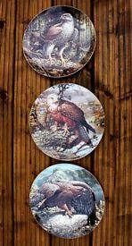 Set of Coalport China Plates